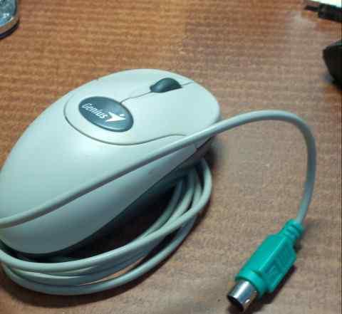 Мышь Джениус