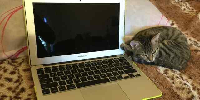 Тонкий MacBook Макбук Air 11 экран