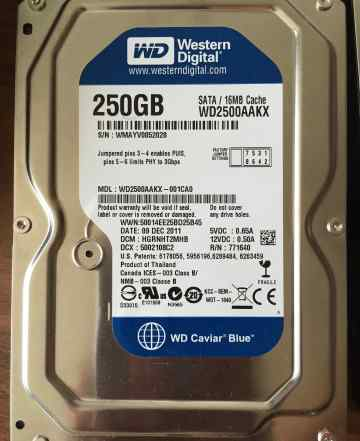 HDD Western Digital 250 Gb SATA