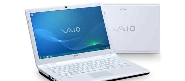 Игровой Sony Vaio - CW1E1R