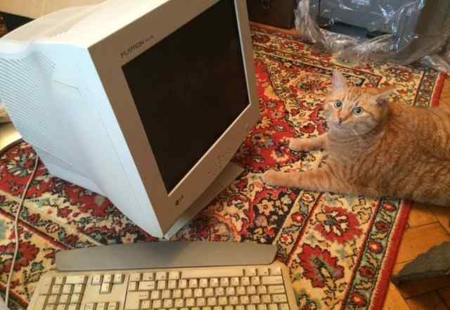 Монитор, клавиатура, мышка