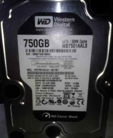 Жесткий Диск Western Digital 750 Gb
