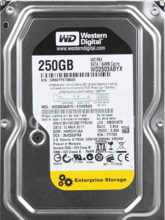 Жесткий диск для сервера WD2503abyx WD 250Gb