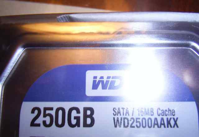 Три новых HDD диска WD2500aakx, 250Гб, 3.5