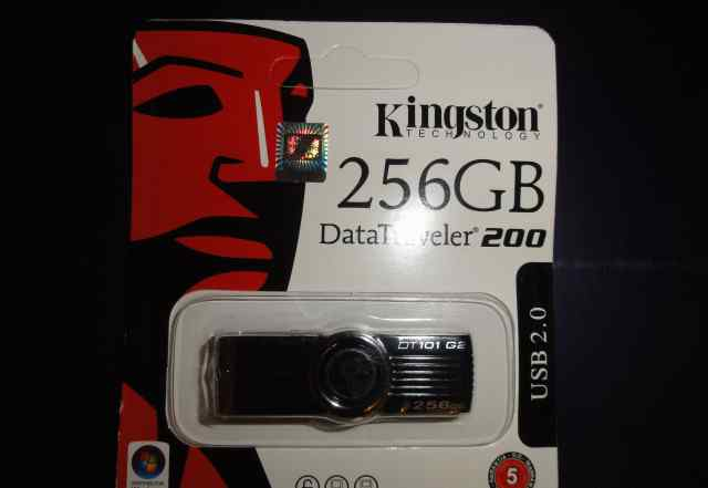 Флэшка Kingston 256 Gb