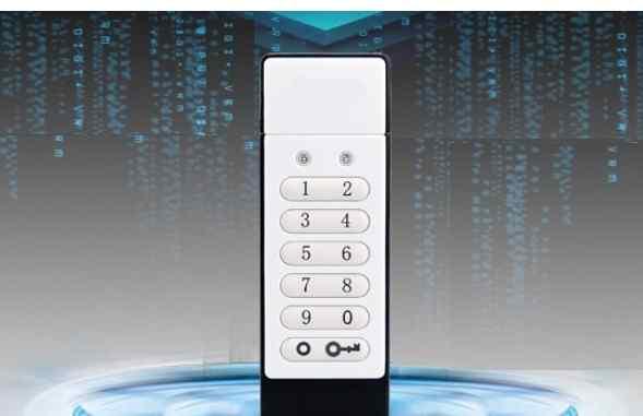 Защищенная с паролем, шифрованием USB флеш 32 Гб
