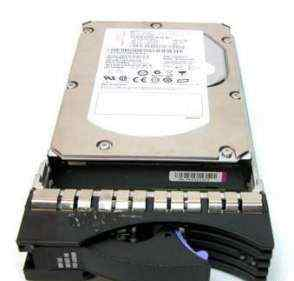 IBM 500Gb 7200rpm 2Gb Fibre Channel (42D0389)