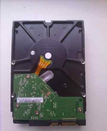 Жесткий диск (HDD) Western Digital 1003fbyx (1TB)